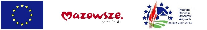 Logo PROW 2007-2013